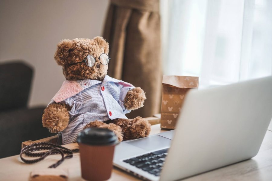 A Teddy Bear working at a computer